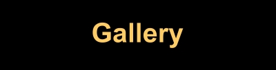 gallery-button